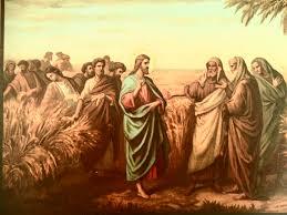 Resultado de imagem para Lucas 6,1-5